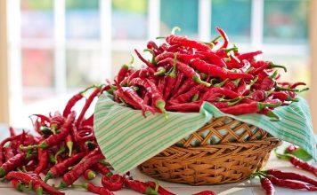 cayenne peppers 2779834 1280 356x220 - Início