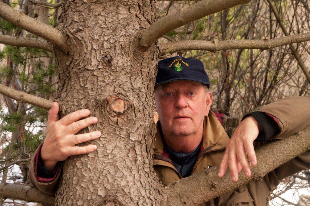 Tree hug 3 - O Serviço Florestal da Islândia recomenda abraçar árvores enquanto você não pode abraçar outras pessoas