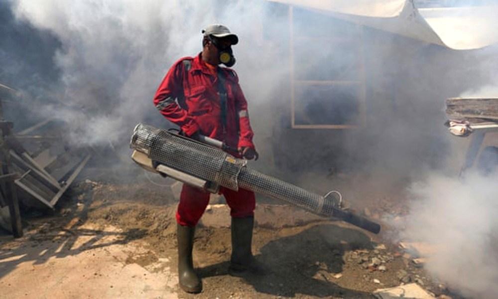 """Achmad Ibrahim AP 1 - Mosquitos """"contaminados"""" com bactérias naturais perdem a capacidade de transmitir a dengue"""