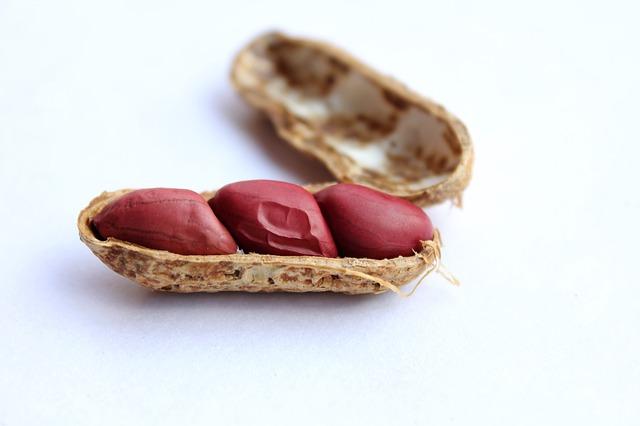 peanuts 1651249 640 - Comer amendoim pode reduzir o risco de derrame isquêmico e doenças cardiovasculares